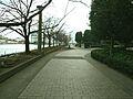 隣接の石川島公...
