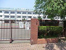 小学校豊島区立 千早小学校まで47m