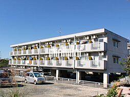 コロナハイツC棟[3階]の外観