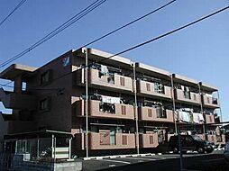 サンコート大島B[205号室]の外観
