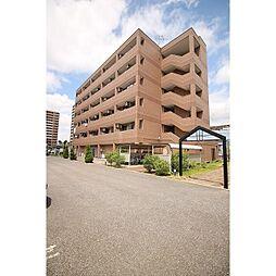 茨城県つくば市島名の賃貸マンションの外観