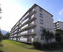 京都府京都市西京区大枝西新林町の賃貸マンションの外観