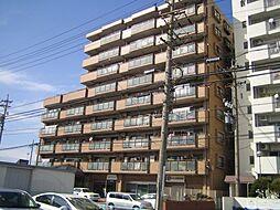 愛知県一宮市九品町3丁目の賃貸マンションの外観