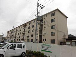 大阪府泉大津市東助松町3丁目の賃貸マンションの外観