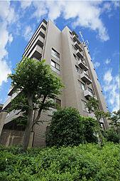 メゾン・モア・トゥール33[8階]の外観