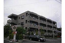 リヴラス・M[3階]の外観