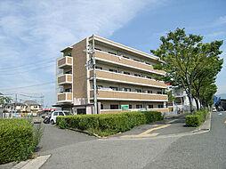ハピネスコトーヨシムラ[203号室]の外観