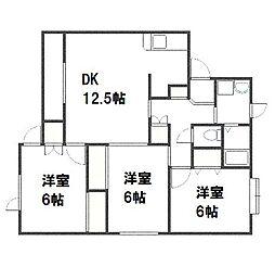 北海道札幌市白石区中央三条3丁目の賃貸アパートの間取り