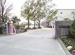 大門小学校618m