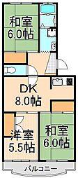 エクセルエステート吉田II[307号室]の間取り