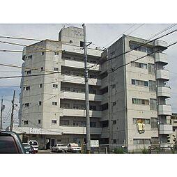 トヨダハイビル[405号室]の外観