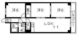 ルミエール天王寺[3階]の間取り