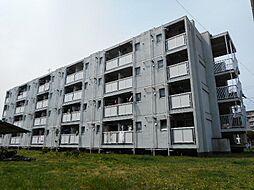ビレッジハウス勝田2号棟[205号室]の外観