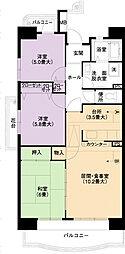 URアーバンラフレ小幡6号棟[4階]の間取り