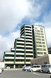 ニューエバーグリーン小倉[11階]の外観