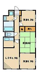 神奈川県相模原市中央区淵野辺本町4丁目の賃貸マンションの間取り
