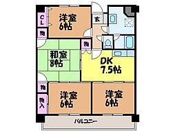 愛媛県松山市北土居4丁目の賃貸マンションの間取り