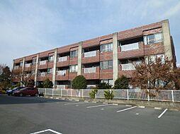 静岡県浜松市中区小豆餅2丁目の賃貸マンションの外観