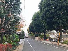 周辺道路/衾町公園近く緑多い住宅街です。