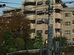 蒲田モリコーポ[507号室]の外観