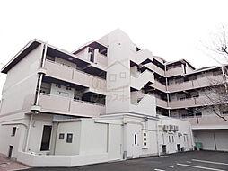 大阪府堺市堺区少林寺町東4丁の賃貸マンションの外観