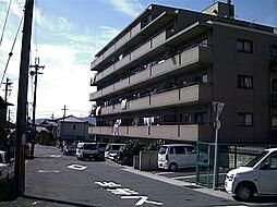 「エーデル音羽」[6階]の外観