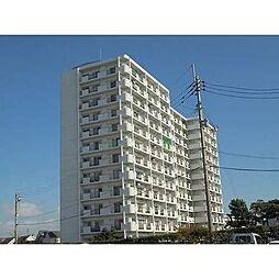 徳島県徳島市川内町鈴江北の賃貸マンションの外観