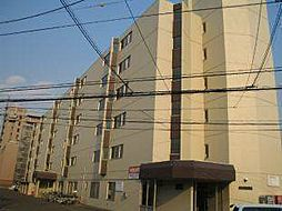 北海道札幌市豊平区豊平八条13丁目の賃貸マンションの外観