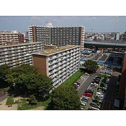 中駒九番団地5号棟[3階]の外観