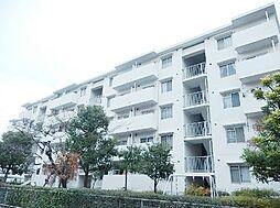 東京都江戸川区南葛西5丁目の賃貸マンションの外観