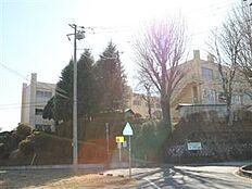 石岡市立柿岡小学校(1536m)