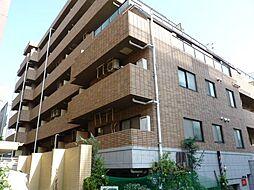 ピアッツァ仲町台ノバ[603号室号室]の外観