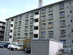 KNハイツ[507号室]の外観