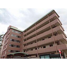 小坂マンション[4階]の外観