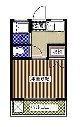 千葉県市川市末広1の賃貸マンションの間取り