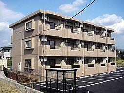 静岡県裾野市富沢の賃貸マンションの外観