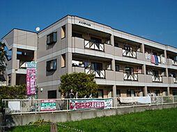 神奈川県高座郡寒川町岡田6丁目の賃貸マンションの外観