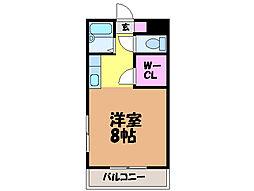 愛媛県松山市中村1丁目の賃貸マンションの間取り