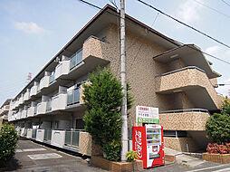 大阪府八尾市恩智北町1丁目の賃貸マンションの外観