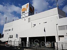 [一戸建] 大阪府堺市西区浜寺南町2丁 の賃貸【/】の外観