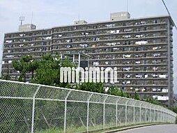 ネオシティ岡崎壱番館[11階]の外観