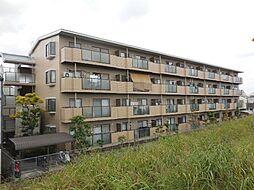 兵庫県尼崎市食満6丁目の賃貸マンションの外観