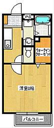 SolegioフジミII[1階]の間取り