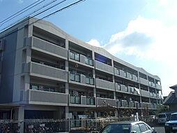モナークシャトー[4階]の外観