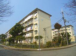 公社清和台住宅団地11号棟[302号室]の外観