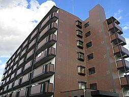 大阪府寝屋川市点野2丁目の賃貸マンションの外観