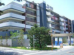レクセル浜松弁天島(402)[402号室]の外観