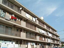 埼玉県さいたま市中央区新中里1丁目の賃貸マンションの外観