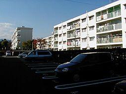 緑ヶ丘団地[4205-556号室]の外観