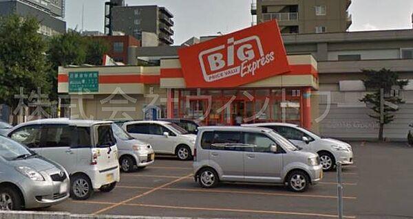 ザ・ビッグエクスプレス平岸店 1193m